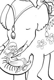 Rajasthani elephant ride