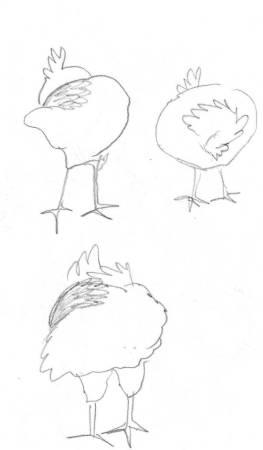 chickens 7 gimp