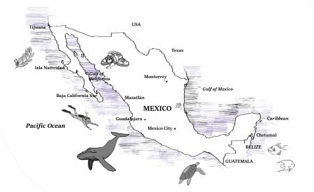 mex-map