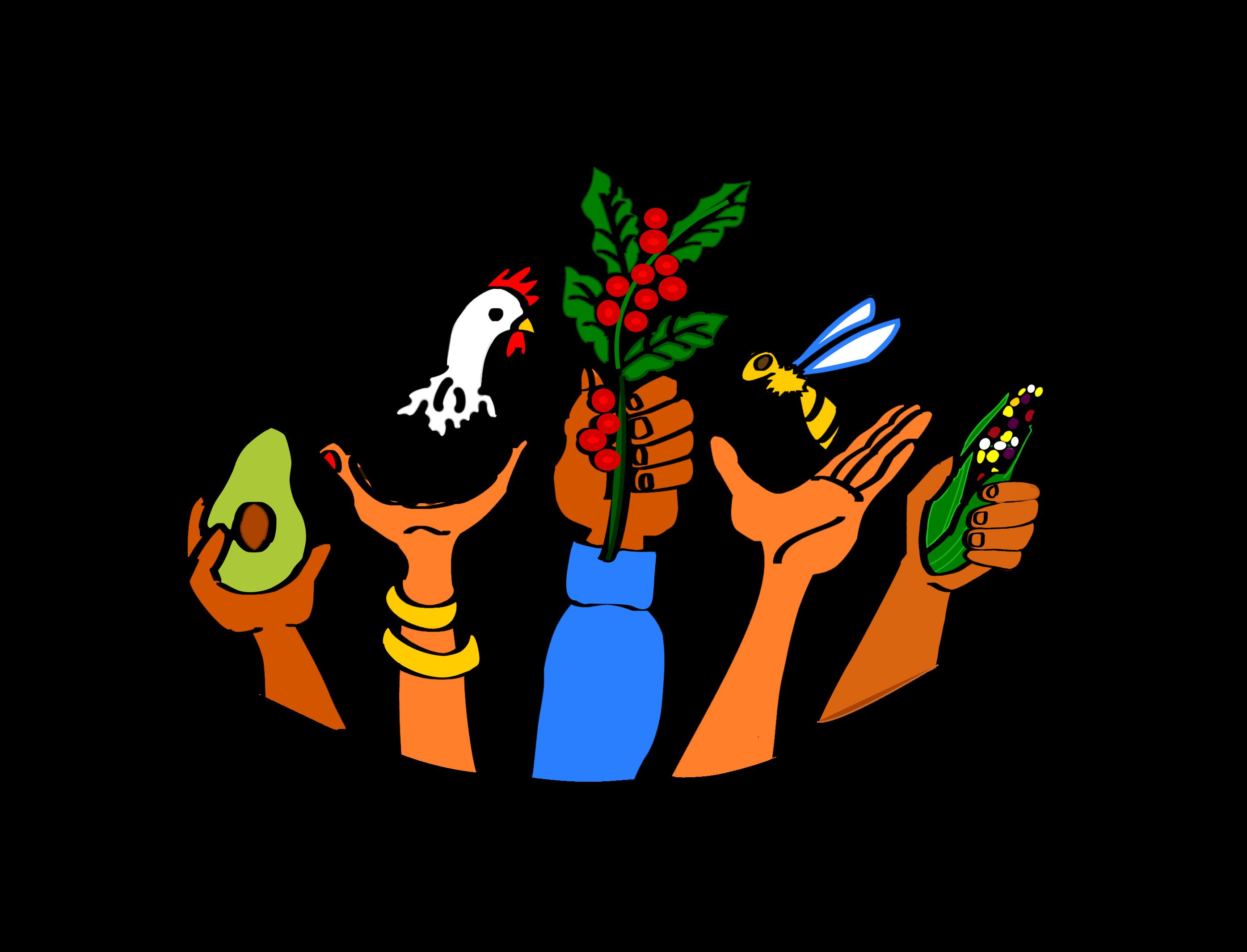 TFF logo color letras a mano